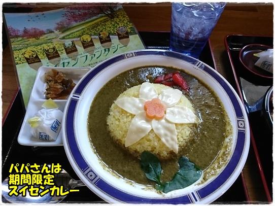 bihoku2_20170429223147411.jpg