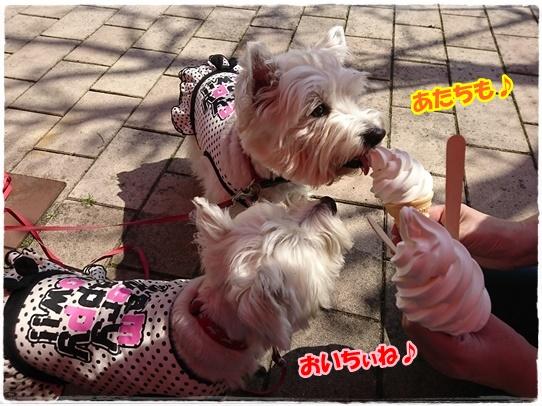 bihoku6_20170429223144c9c.jpg