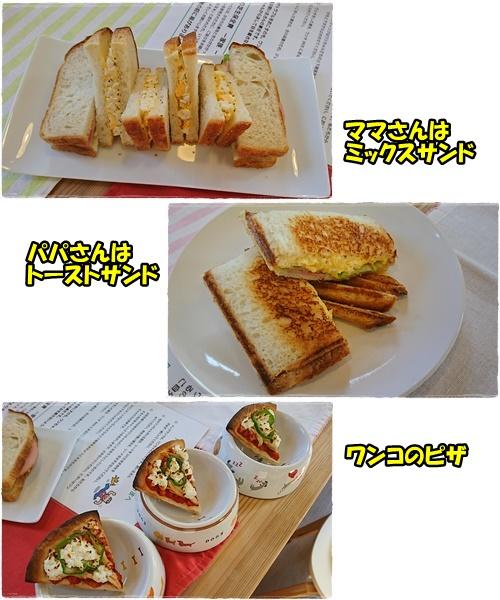 cafe12_20170508013443ef8.jpg