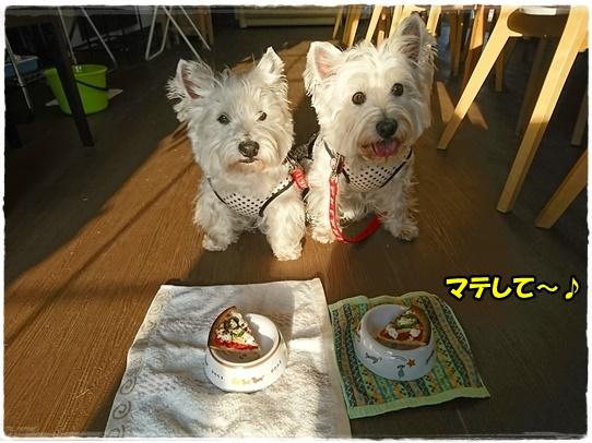 cafe13_201705080134421cc.jpg