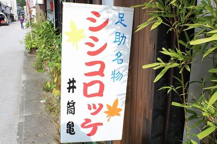 s-ashisukeIMG_5467.jpg