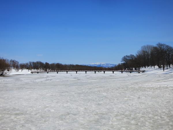 月形町皆楽公園キャンプ場 橋と遠くの山