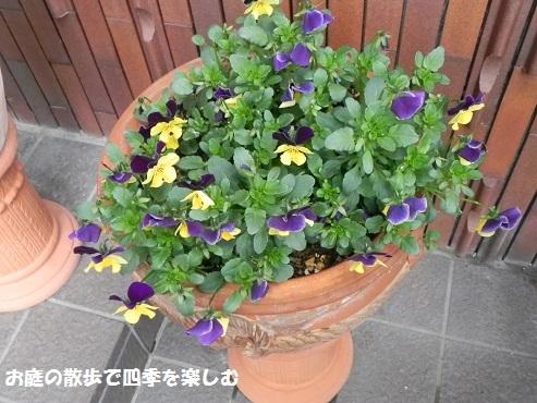 biora37_201703211421350ff.jpg