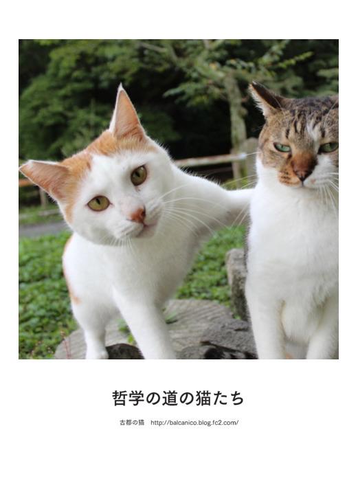 tetugaku-2017-0331.jpg