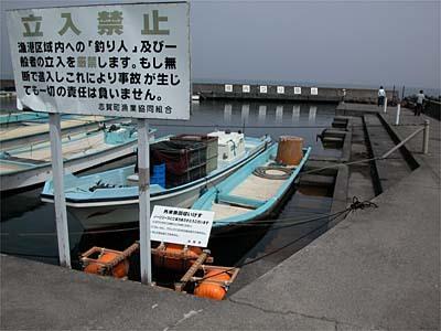 リリース禁止初日の和邇中浜漁港(03/04/01)