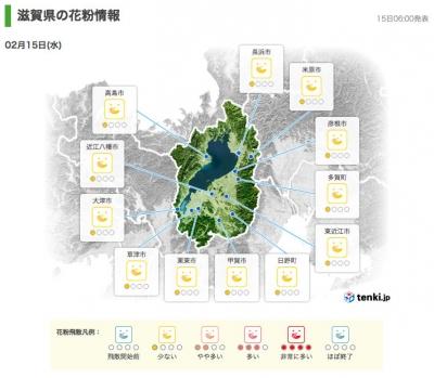 滋賀県の花粉情報(tenki.jp 2月15日6時発表)