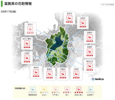 滋賀県の花粉情報(3月17日18時)