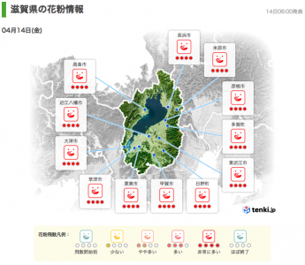 滋賀県の花粉情報(4月14日6時)