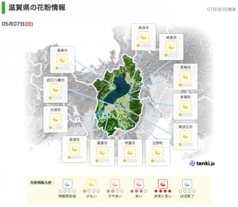 滋賀県の花粉情報(5月7日6時)