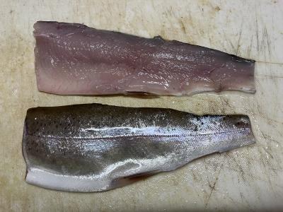 DVD「攻殻機動隊」