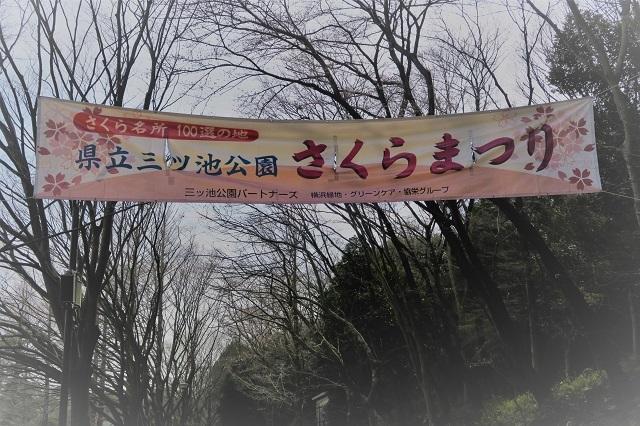 2017三ッ池公園の桜(1)