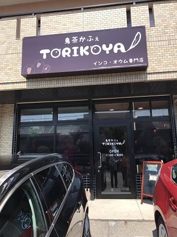 torikoya10.jpg