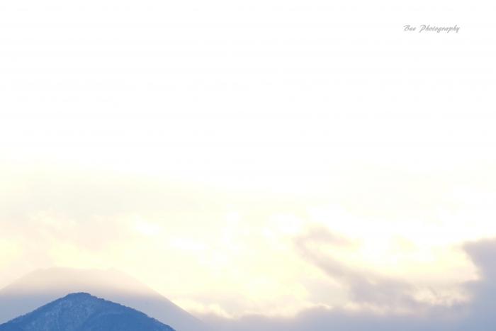 bee-富士山8713