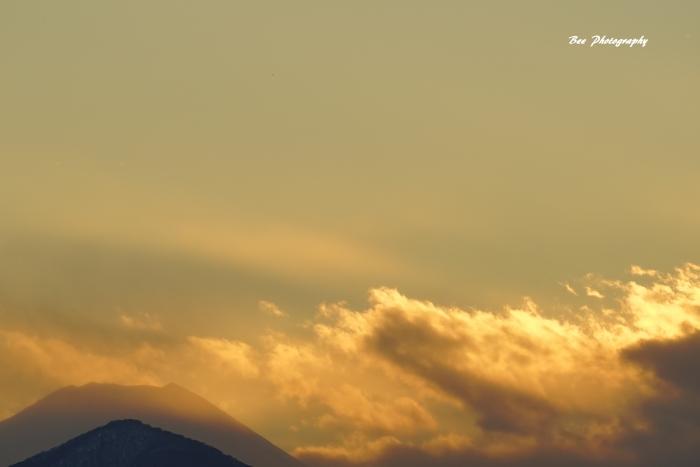bee-富士山8717