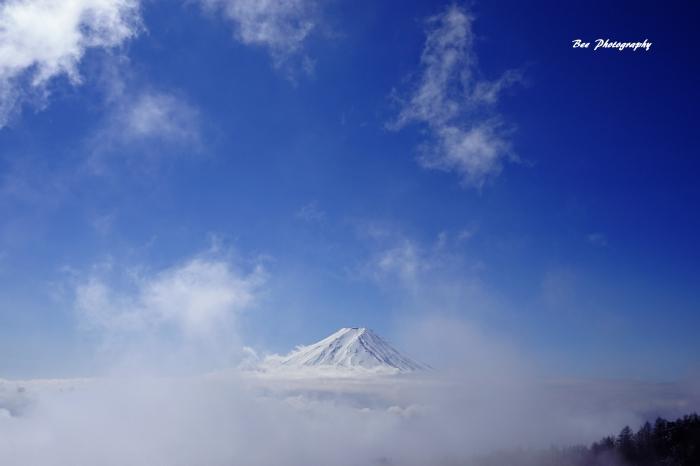 bee-富士山-三つ峠9438