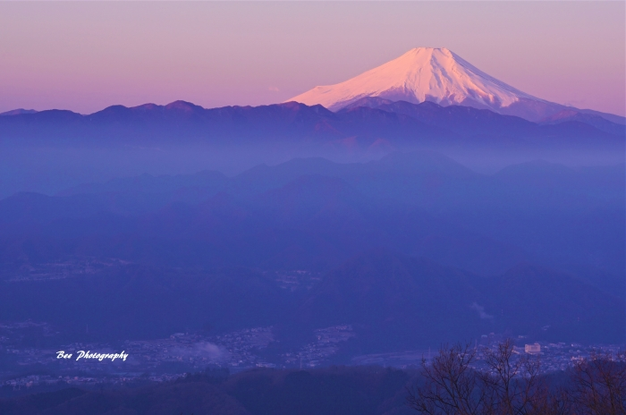 bee-富士山-陣馬山9295