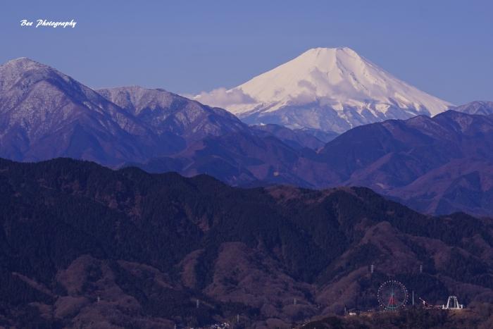 bee-富士山-もみじ台9354