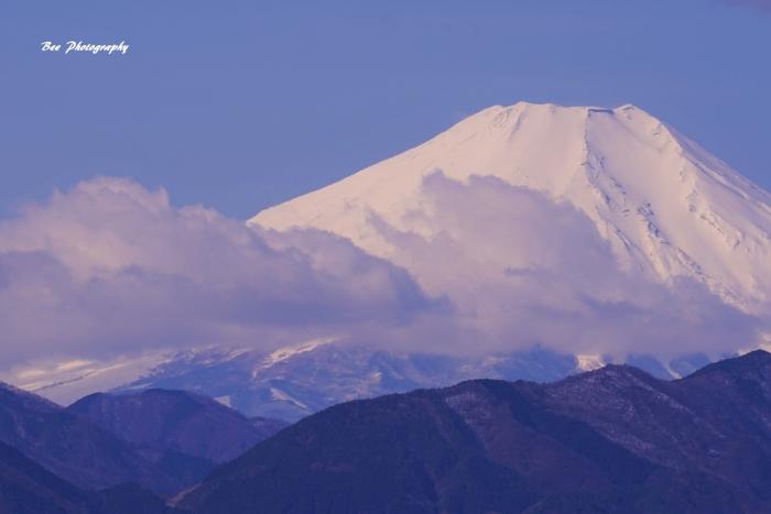 bee-富士山-一丁平9382