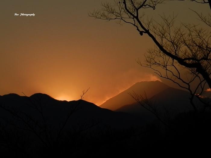 bee-富士山6228