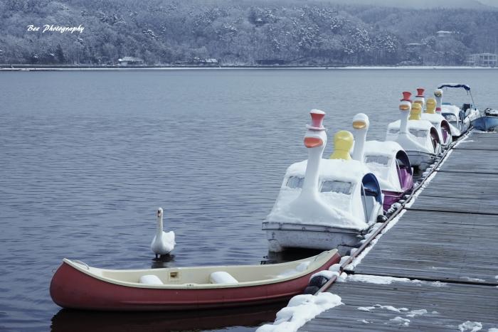 bee-山中湖0714
