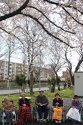s-より・良江・野澤・けさよ・石井