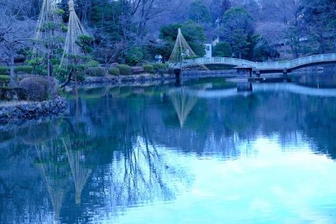 10薬師池公園池