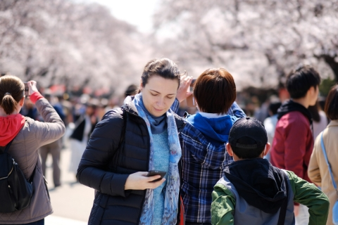 05上野の桜