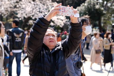 08上野の桜
