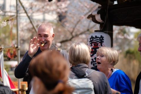 26上野の桜