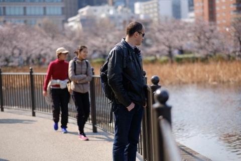 27上野の桜