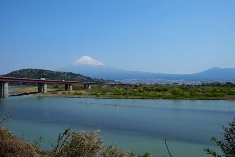 13富士川と富士山と愛鷹山
