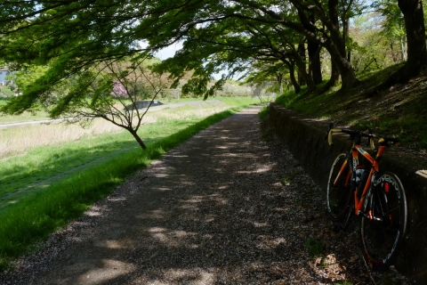 05武蔵野公園 C59