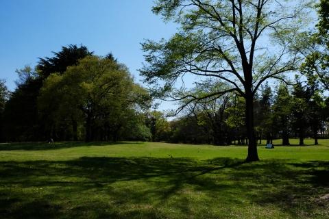10野川公園