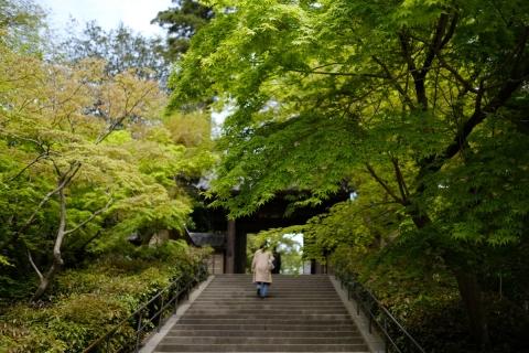 01円覚寺総門のモミジ