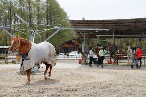 07県道71号の乗馬クラブ