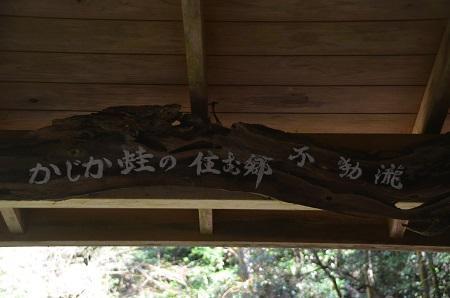 20170309沢山不動滝11