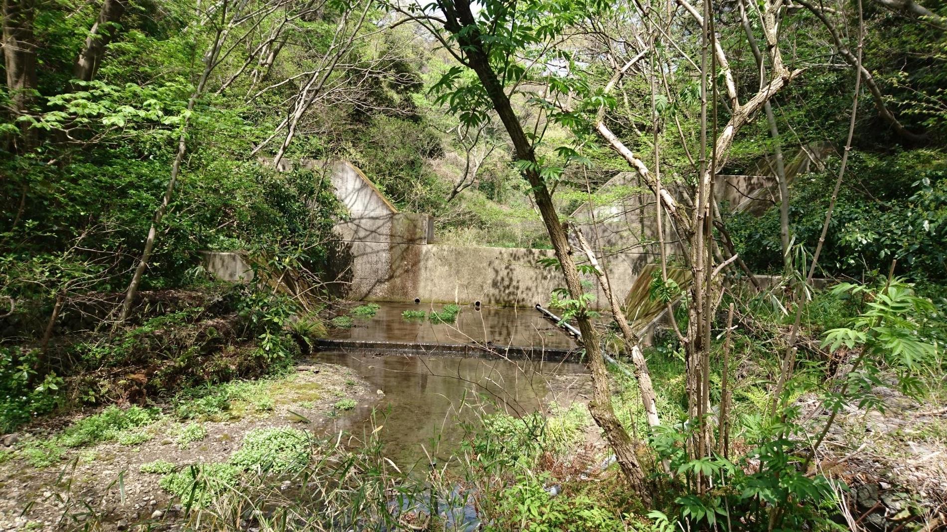 DSC_0001_沢山池堰