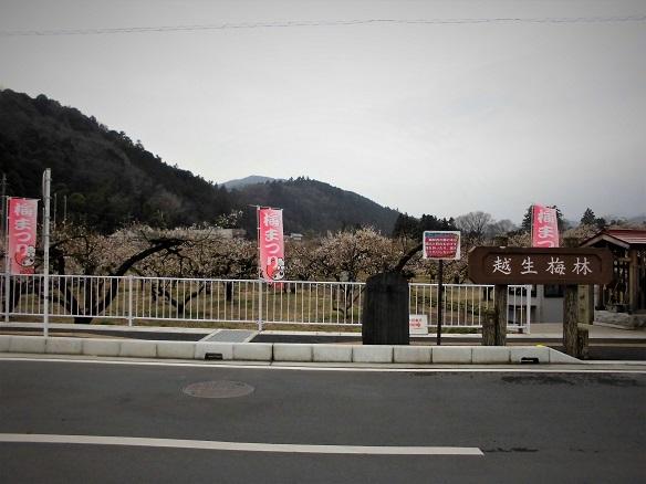 17.3.2 越生梅林・弘法山 (28)