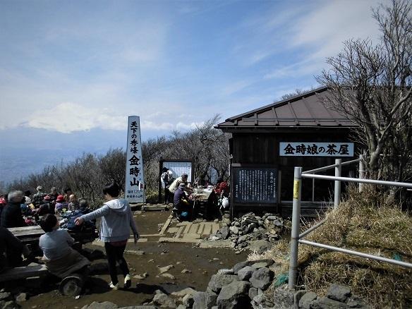 17.4.5金時山スケッチハイク (82)