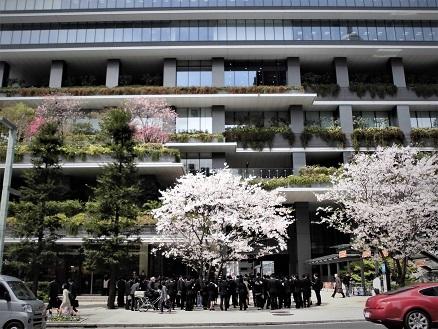 2 17.4.10 鴨川桜散歩と青柳個展 (139)