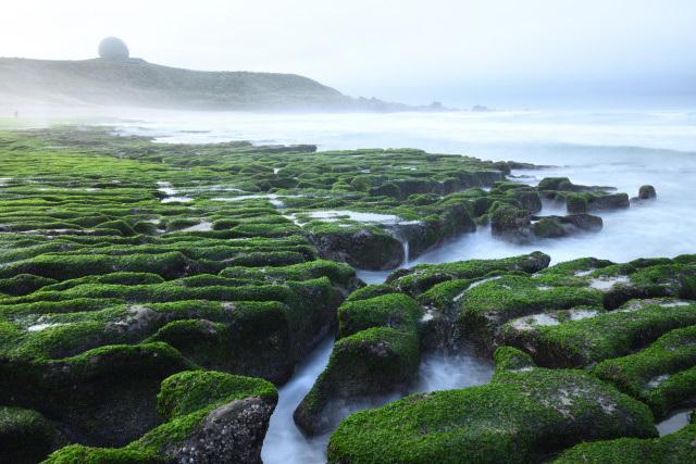グリーンビーチ(1)