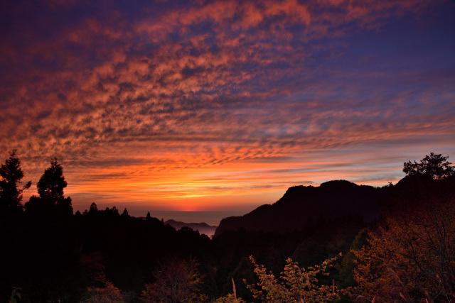 阿里山の夕暮れ(2)