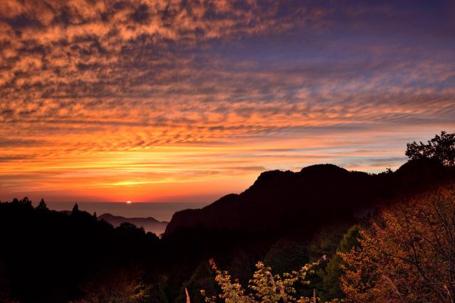 阿里山の夕暮れ(1)