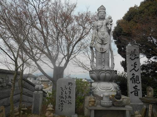 かえる寺2