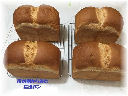 170327 山食提出パン