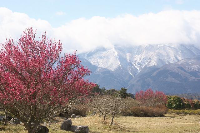 2017‐3‐8‐1山