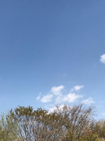 jo_tenki.jpg