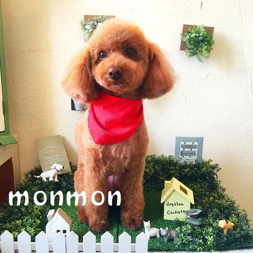 monmon 城戸