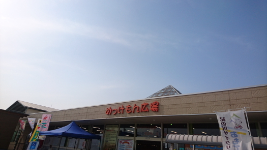 DSC_0117ブログ