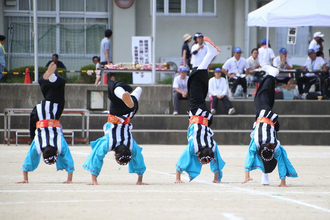 seika16sakura 20